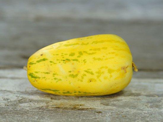 アップルメロンの種