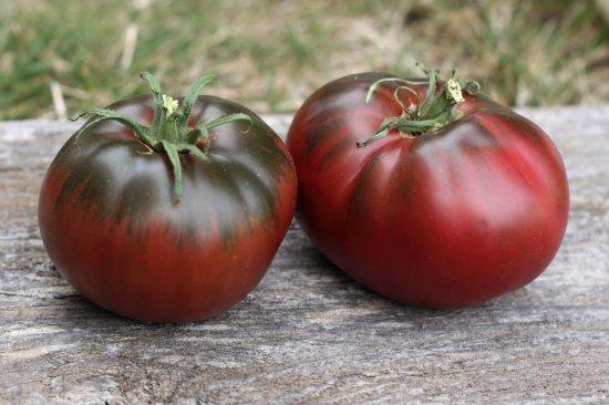 ポールロベソントマトの種