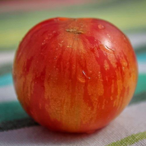 ストロベリータイガートマトの種
