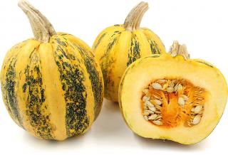 アメリカントンドかぼちゃの種