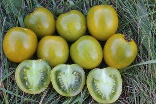 グリーングレープチェリートマトの種