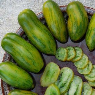 グリーンソーセージトマトの種