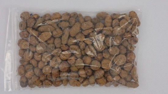 タイガーナッツの種