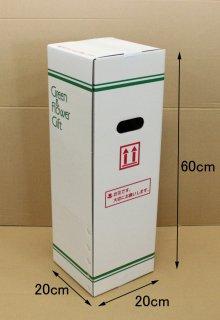鉢物用ダンボールボックスSSサイズ: 20×20×60cm