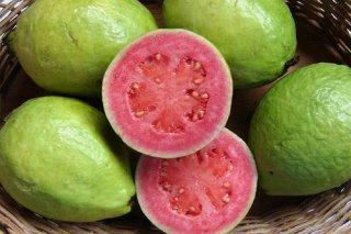 グアバの種