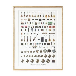 This is instrumental Art Poster