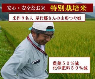 29年度産 屋代郷さんの 特別栽培米 山形つや姫(農薬50%減・化学肥料50%減)1kg
