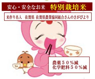 29年度産 佐賀県農業協同組合さんの 特別栽培米 佐賀さがびより(農薬50%減・化学肥料50%減)1kg
