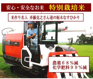 29年度産 斉藤克之さん達の 特別栽培米 栃木なすひかり(農薬75%減・化学肥料99%減)1kg