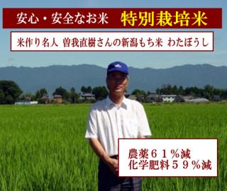 29年度産 曽我直樹さんの特別栽培米もち米 わたぼうし( 農薬61%減・化学肥料59%減 ) 1kg