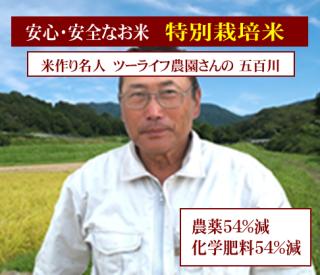29年度産 鹿深米 特別栽培米 滋賀みずかがみ(農薬50%減・化学肥料50%減)1kg