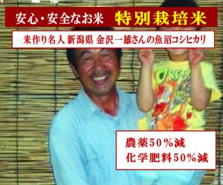 29年度産 金沢さんの 特別栽培米 新潟魚沼コシヒカリ(農薬50%減・化学肥料50%減)玄米1kg