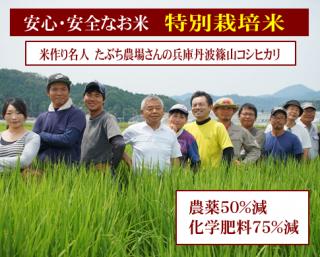 新米 令和元年度産 たぶち農園さんの 特別栽培米 兵庫篠山コシヒカリ(農薬50%減・化学肥料75%減)1kg