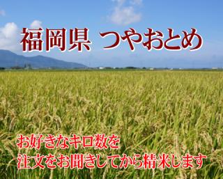 30年度産 福岡県つやおとめ 1kg