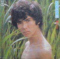 郷ひろみ / ひろみの旅 (LP)