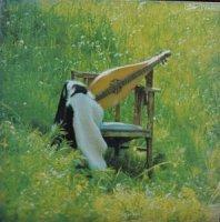 LILIY(リリィ) / DULCIMER(ダルシマ) (LP)
