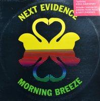 Next Evidence / Morning Breeze (12
