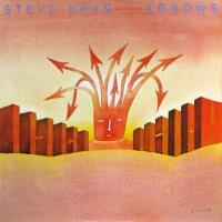 Steve Khan / Arrows (LP)