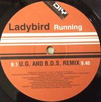 Ladybird / Running (12