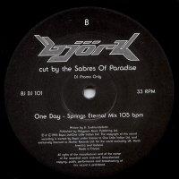 Bjork / Bjork Cut By The Sabres Of Paradise (10
