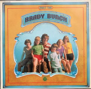 BRADY BUNCH / MEET THE BRADY BUNCH (LP)