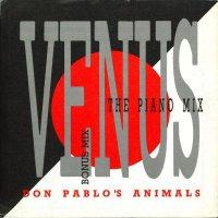Don Pablo's Animals / Venus (7