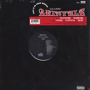 Akinyele / Put It In Your Mouth (12