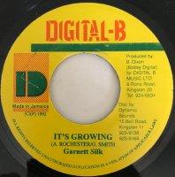 Garnett Silk / It's Growing (7
