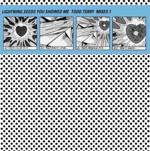 Lightning Seeds / You Showed Me (Todd Terry Mixes1)(12