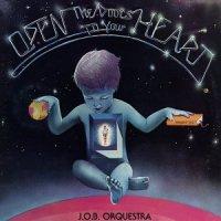 J.O.B ORQUESTRA / OPEN THE DOOR TO YOUR HEART (LP)