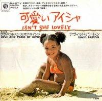 David Parton / Isn't She Lovely(可愛いアイシャ) (7