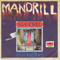 Mandrill / Mandrill / Warning Blues (7