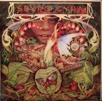 Spyro Gyra / Morning Dance (LP)