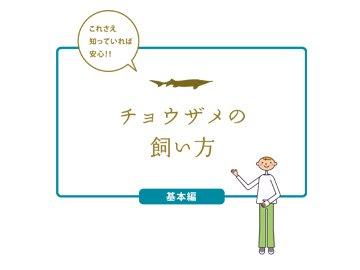 飼育マニュアル(基本編)_メイン