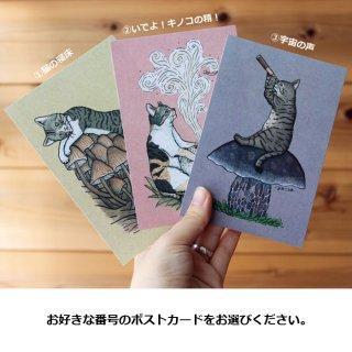 ●猫とネコのお友達3● ポストカード