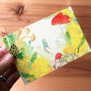 ●猫とネコの絵本シリーズ●ミモザの中で ポストカード