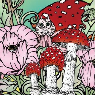 花ときのこと猫 ポストカード