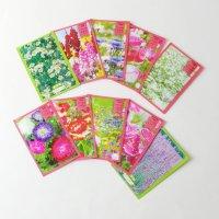 【10ヶ入】花の種 名刺サイズ