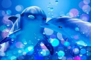 ラッセン「kissing dolphins」 ポスター
