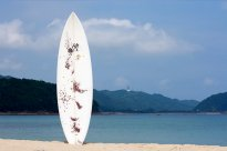 303SURFBOARDS  303×JJ3 model