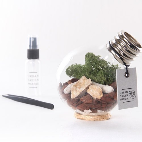 【URBAN GREEN MAKERS】TERRARIUM BULB02