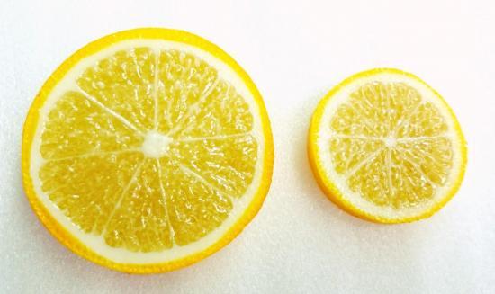 リアルなフルーツ レモン両面小