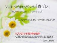 春プレ/ソレイユからのささやかなプレゼント