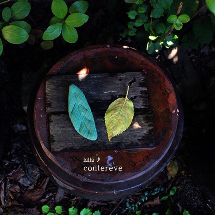 Leaf pin『contereve』17FW