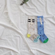 yacht summer knee socks<br>Set of 2<br>『yoi』<br>18SS