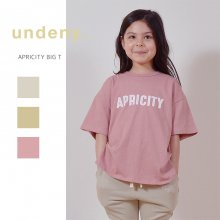 APRICITY big T<br>3 color<br>『undeny.』<br>定価<s>2,420円</s>