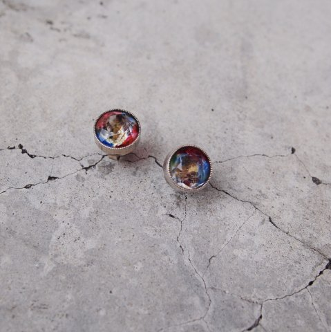 Pisces / Rainbow Crystal Pierced Earrings from UK