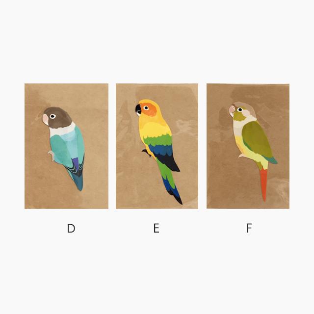 鳥デザインステッカー(SMALL BIRD) 商品の様子