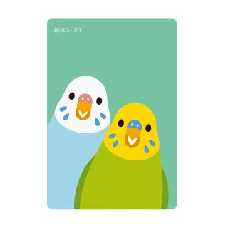 SMILE BIRD パスケース(セキセイインコ)