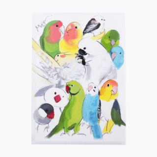 オクムラミチヨ A4クリアファイル(インコとオウムと野鳥)